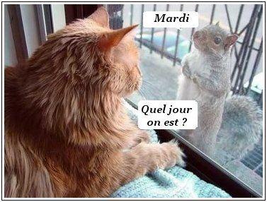 """Résultat de recherche d'images pour """"MARDI"""""""